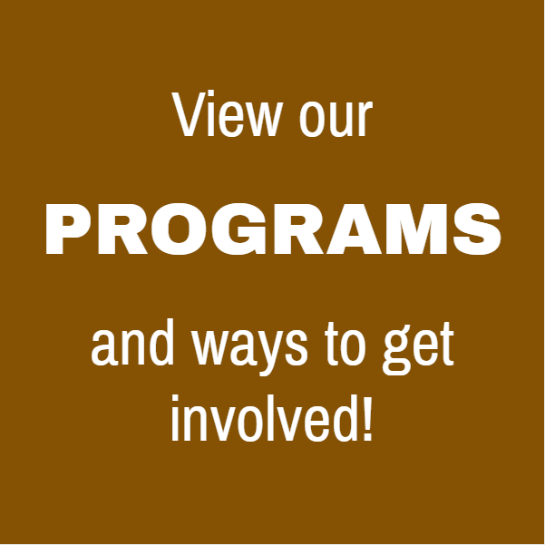 View Our Programs
