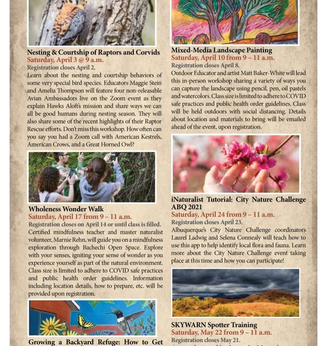 BERNCO OPEN SPACE OFFERS SPRING CLASSES