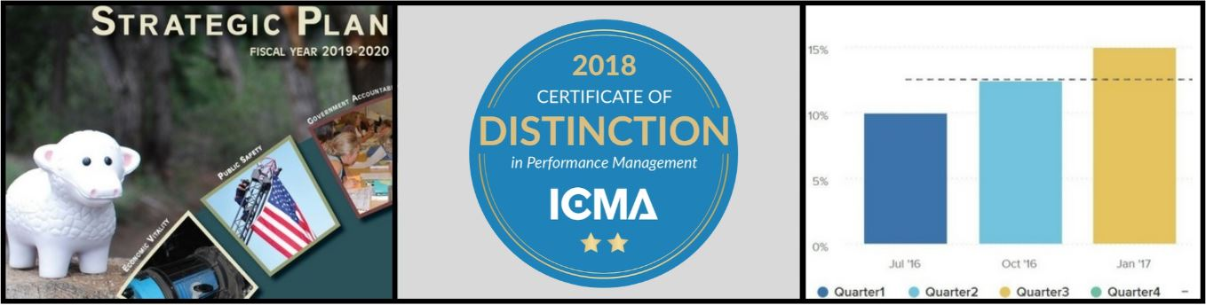 2018 Certificate of Distinction in Performance Management ICMA
