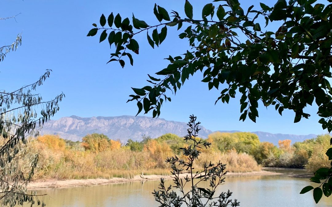 Bernalillo County Awarded New Mexico Clean and Beautiful Grant